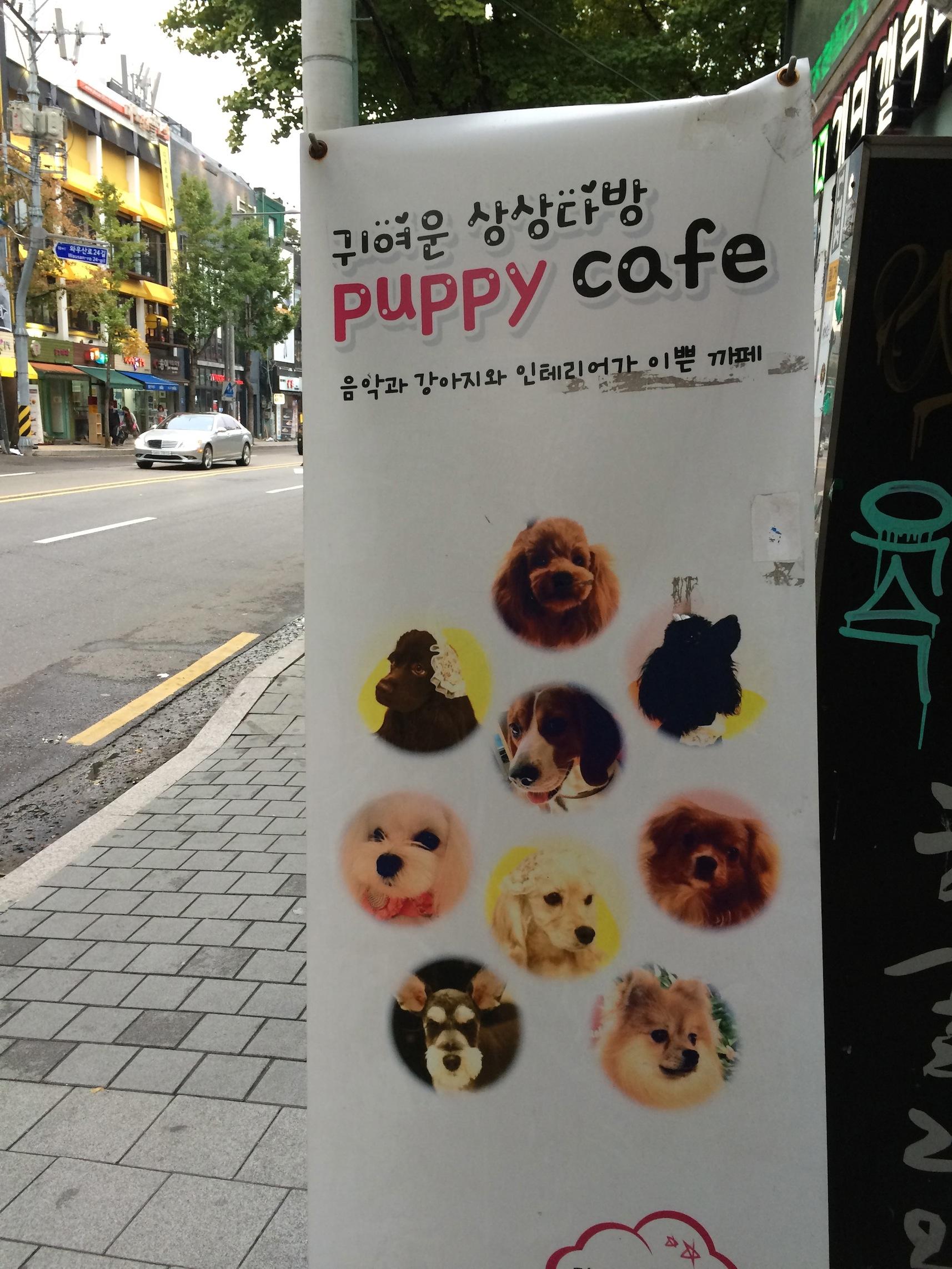 Puppy Cafe
